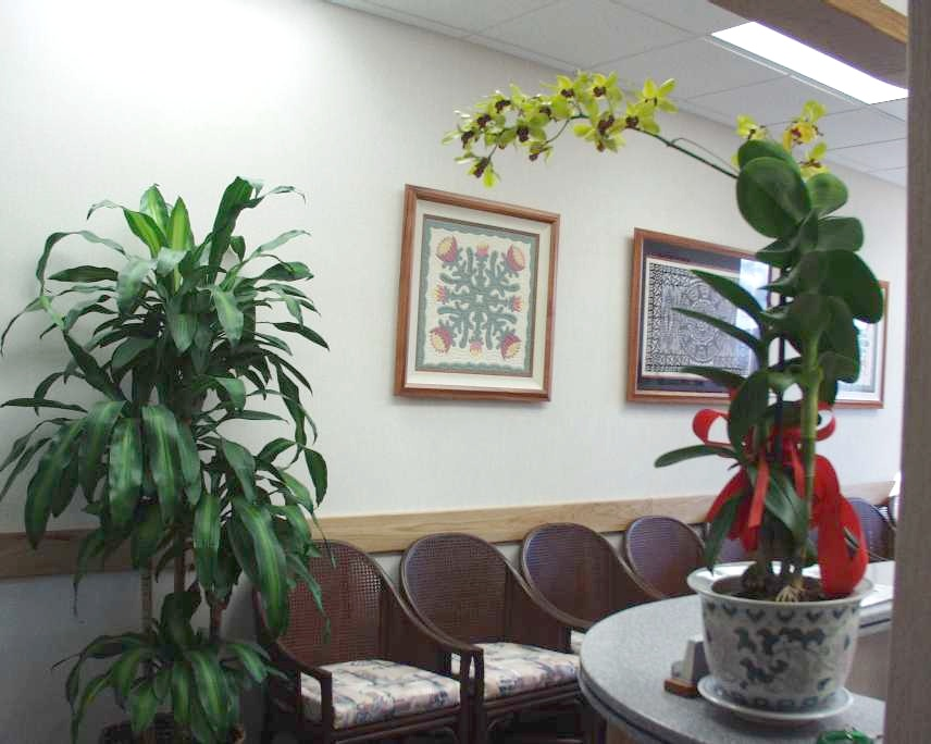 Dr. Horton's Office - 8th floor